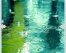 雨の日 それでも花粉症は